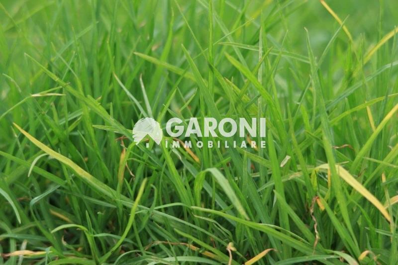 fotografie - terreno agricolo Faenza (RA)