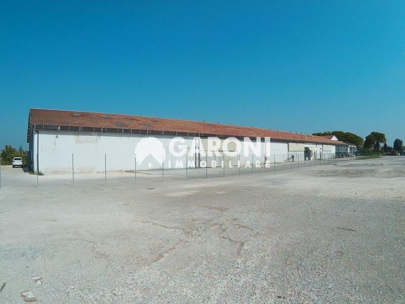 fotografie - capannone Faenza (RA) Campagna Monte