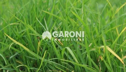 terreno agricolo Faenza (RA) Campagna Monte